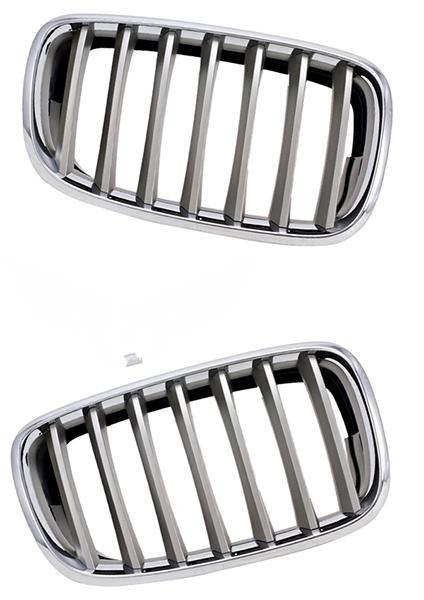 Решетка BMW X5 (E70) 2006-2013 (Титановая)